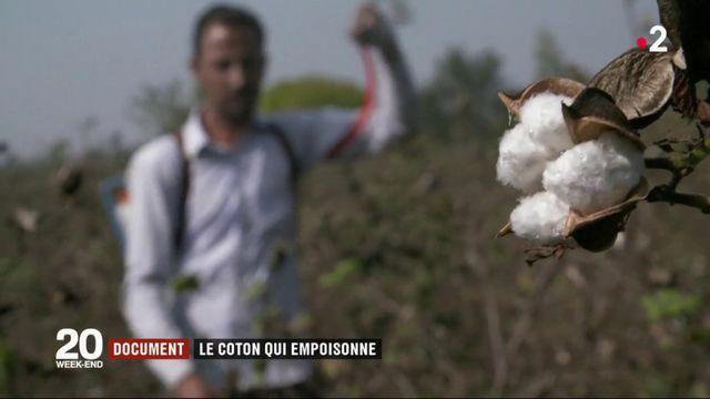Conso : la face cachée du coton