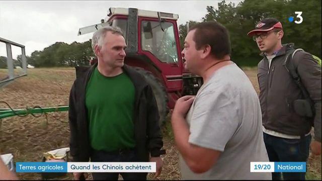 Terres agricoles : quand les Chinois achètent