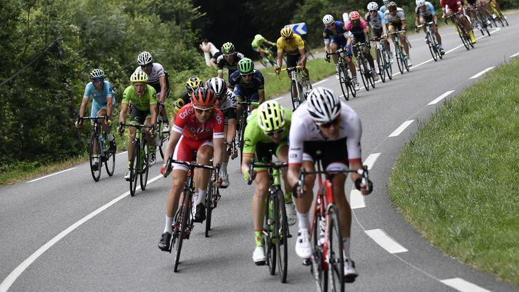 Les cyclistes du Tour de France, lors de la septième étape, longue de 162,5 km entre L'Isle-Jourdain et le lac de Payolle, le 8 juillet 2016. (JEFF PACHOUD / AFP)