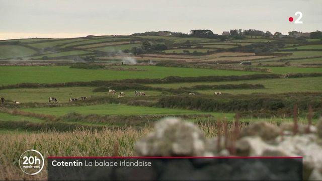 Cotentin : une terre aux airs d'Irlande