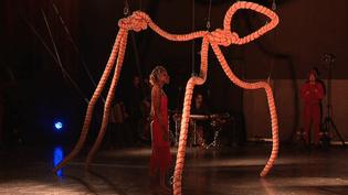 """""""Protéus"""" de la compagnie """"Le clan des Songes"""", l'un des 20 spectacles présentés dans le cadre de Marionnettissimo.  (France 3 / Culturebox)"""