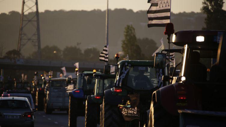 D'autres agriculteurs sont passés par l'A13 pour rejoindre Paris. La photo a été prise autour de Mantes-la-Jolie (Yvelines). (KENZO TRIBOUILLARD / AFP)