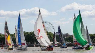Les bateaux de la Solitaire du Figaro, le 30 mai 2015, à Bordeaux (Gironde). (  MAXPPP)