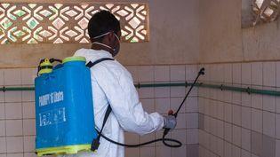 Traitement préventif contre la peste dans une école primaire à Antananarivo (Madagascar). (RIJASOLO / AFP)