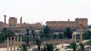La cité antique de Palmyre (Syrie), le 17 mai 2015. ( AFP )
