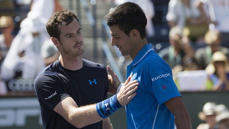 Andy Murray félicite Novak Djokovic pour sa victoire en demi-finale du Masters 1000 d'Indian Wells (2015)