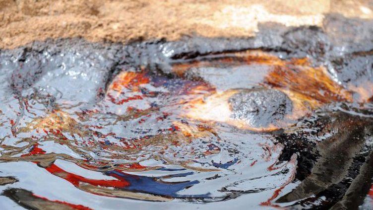 Rivière polluée par le pétrole dans le village de Bodo (delta du Niger) en Juin 2006 (Photo AFP)