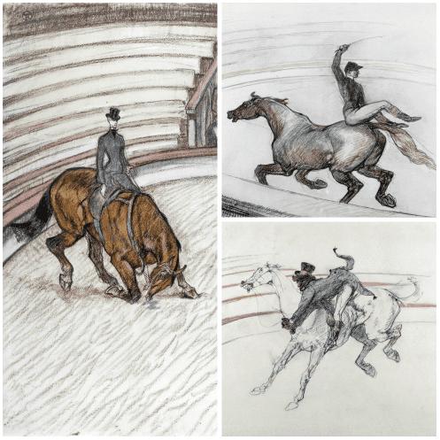 Les chevaux du cirque : dessins de Toulouse-Lautrec  (coll_jp_gimbergues)