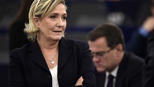 La présidente du Front national Marine Le Pen au Parlement européen, à Strasbourg, le 17 janvier 2016. (FREDERICK FLORIN / AFP)