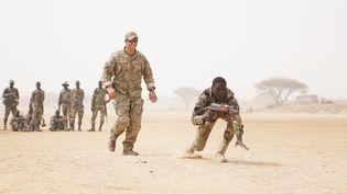 Un membre des forces spéciales américaines entraîne des militaires nigérians à Diffa (sud-est du Niger) le 11 mars 2017. (AFP - ZAYID BALLESTEROS / US ARMY)