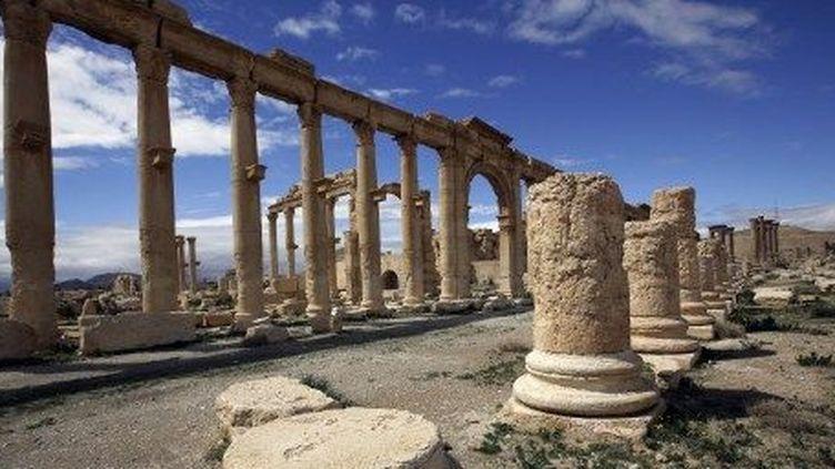Le site de Palmyre, la ville de la Reine Zénobie (IIIe siècle), en Syrie. (JOSEPH EID / AFP)