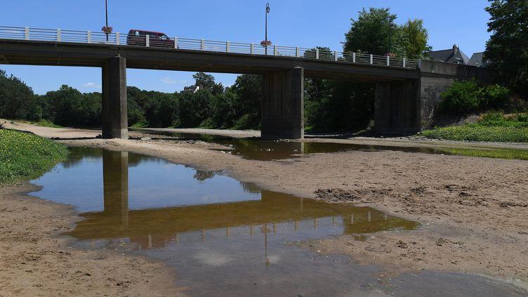 La sécheresse s'etend dans le département de la Loire, en France. (JOSSELIN CLAIR / MAXPPP)