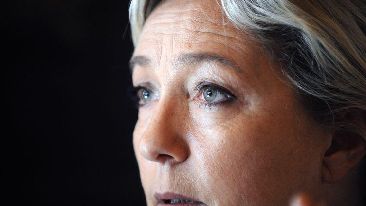 Marine Le Pen, la présidente du Front national, le 14 avril 2013 à Balma (Haute-Garonne). (REMY GABALDA / AFP)