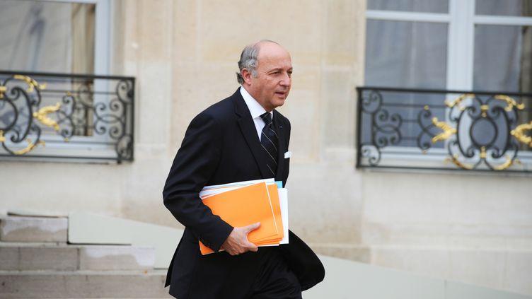 Le ministre des Affaires étrangères, Laurent Fabius, le 6 novembre 2013 à Paris. (ALAIN JOCARD / AFP)