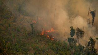 Incendie dans la réserve extractive de Jaci-Paraná, en Amazonie, dans l'ouest du Brésil, le 16 août 2020. (CHRISTIAN BRAGA / GREENPEACE BRAZIL)