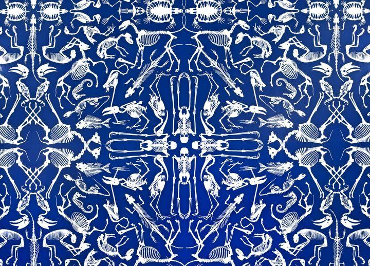 """""""Skeleton"""" - collection The new Domestic landscape, graphiste : Studio Job, imprimeur : Rasch, éditeur : Domestic  (Les Arts Décoratifs, Paris / photo Jean Tholance)"""