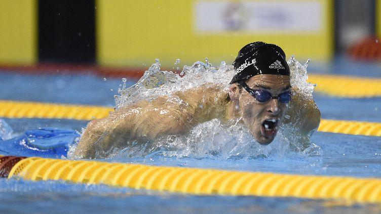 Camille Lacourt le 3 avril 2016 à Montpellier (Héraut) lors des championnats de France de natation. (STEPHANE KEMPINAIRE / AFP)