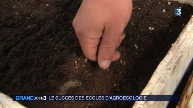 """Agriculture : la révolution douce de l'école """"Terre et humanisme"""""""