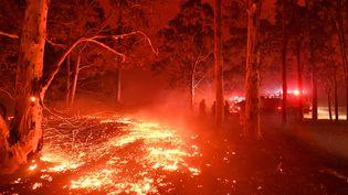 Des pompiers luttent contre les incendies près de la ville de Nowra, en Australie, le 31 décembre 2019. (SAEED KHAN / AFP)