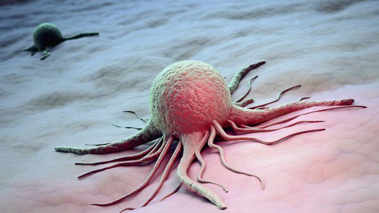 L'étude à paraître vendredi 2 janvier 2015 ne prend toutefois pas en compte le cancer du sein, ni celui de la prostate, particulièrement fréquents. (ANDRZEJ WOJCICKI / SCIENCE PHOTO LIBRARY RF / GETTY)