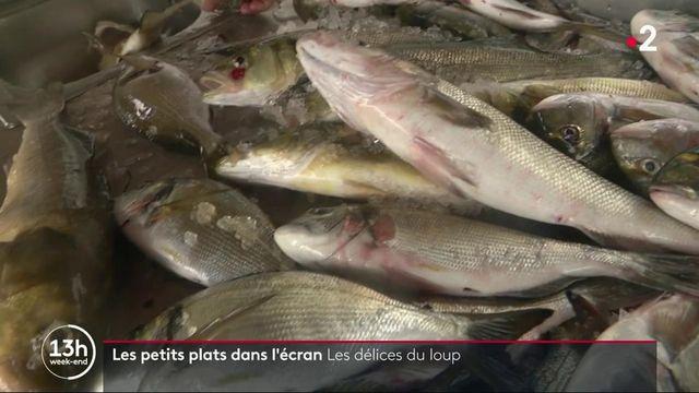 Gastronomie : à la découverte du loup, un poisson emblématique pêché en méditerranée