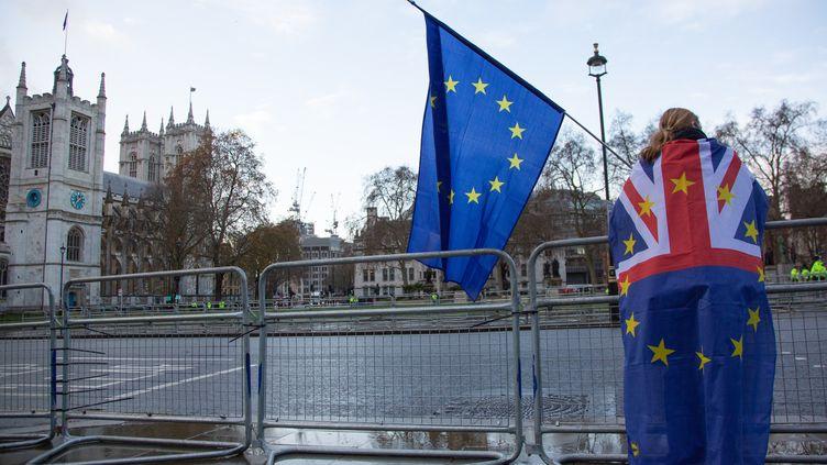 Une manifestante pro-Union européenne devant le Parlement britannique, à Londres, le 14 décembre 2020. (KIKI STREITBERGER / NURPHOTO / AFP)