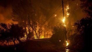 Des incendies ravagent l'île d'Eubée en Grèce, le 4 août 2021. (EUROKINISSI / AFP)