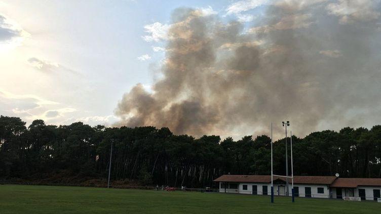 Le feu s'est déclaré, jeudi 30 juillet, dans la forêt de Chiberta, à Anglet (Pyrénées-Atlantiques). (S. Deschamps / France 3 Aquitaine)