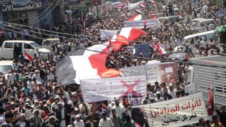 Manifestation anti-gouvernementale dans la province d'Ibb Yemen, le 17 avril 2011 (AFP/STR)