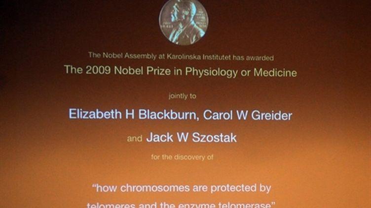Ecran géant annonçant à l'Académie Nobel à Stockholm l'attribution du prix Nobel de médecine 2009 (© AFP PHOTO / OLIVIER MORIN)