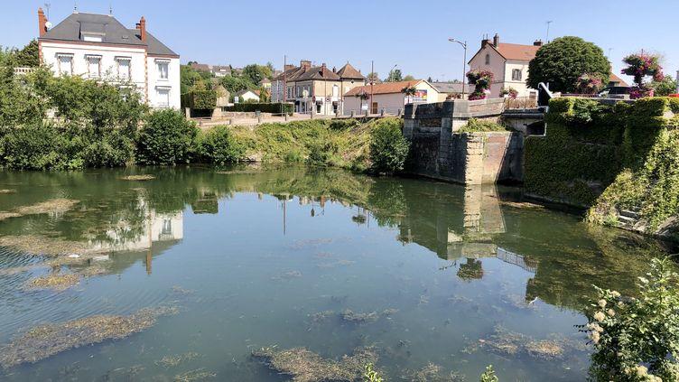 Une vue du canal de Bourgogne, à Migennes, dans l'Yonne, le 9 août 2020. (FRANCEINFO / NOEMIE BONNIN)