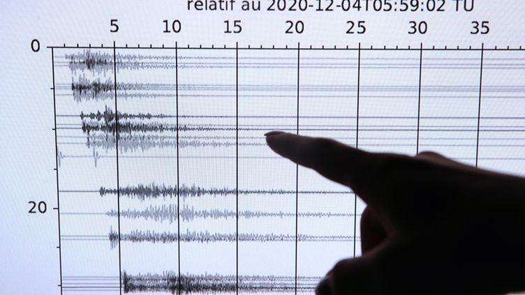 Lesismogramme d'un secousse qui s'est produite le 4 décembre 2020, près de La Wantzenau (Bas-Rhin). (JEAN-MARC LOOS / MAXPPP)