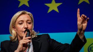 Marine Le Pen pendant un débat sur les élections européennes, le 7 avril 2014, à Arras (Pas-de-Calais). (EMMANUEL KUTYLA / AFP)