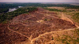Vue aérienne de la déforestation de forêt amazonienne, le 29 août 2019, dans l'Etat de Mato Grosso, au Brésil. (MAYKE TOSCANO / MATO GROSSO STATE COMMUNICATION / AFP)