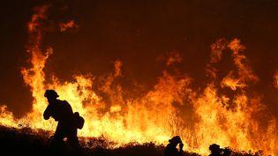 """Des pompiers luttent, le 17 septembre, contre le """"King Fire"""",le plus grand des incendies qui ravage la Californie. (JUSTIN SULLIVAN / GETTY IMAGES NORTH AMERICA / AFP)"""