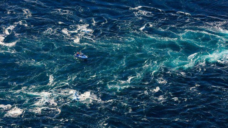 Une seule goutte d'eau contient des milliers d'organismes vivants. (JEROME HOUYVET / ONLY FRANCE)