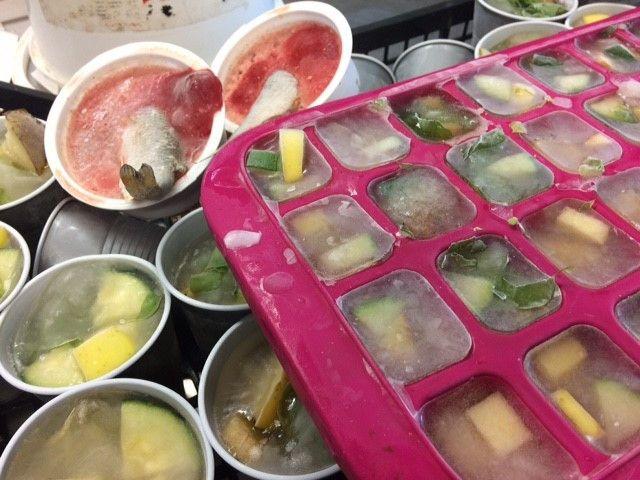 Les soigneurs distribuent de la nourriture congelée aux animaux du zoo pour tenter de les rafraîchir. (ARIANE GRIESSEL / RADIO FRANCE)