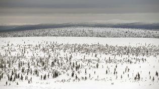 Un paysage de Laponie finlandaise, en février 2015. (DELFINO DOMINIQUE / HEMIS.FR / AFP)