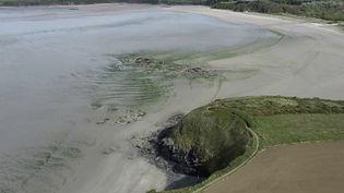 Écologie : le fléau des algues vertes en Bretagne (FRANCE 2)