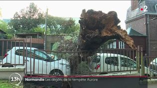 La tempête Aurore n'a pas épargné la Normandie sur son passage. La région s'est retrouvée violemment balayée par la tornade, qui a causé plusieurs dégâts importants, dont de sérieux problèmes de circulation. (CAPTURE ECRAN FRANCE 2)