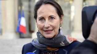 La ministre de l'Ecologie Ségolène Royal le 29 octobre 2014 à Paris. (BERTRAND GUAY / AFP)
