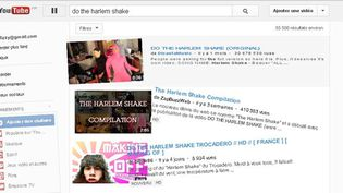 "Youtube fait son propre ""Harlem Shake"".  (Youtube)"