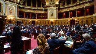 L'hémicycle du Sénat, le 22 juillet 2020. (DANIEL PIER / NURPHOTO / AFP)