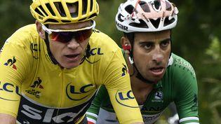 Christopher Froome a cédé, jeudi 13 juillet, son maillot jaune à son poursuivant Fabio Aru à l'issue de la 12e étape. (PHILIPPE LOPEZ / POOL)