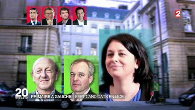 Primaire à gauche : sept candidats dans la bataille