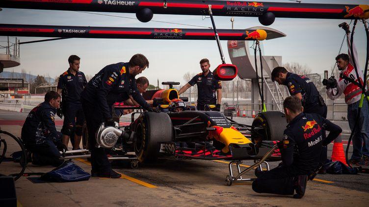 Max Verstappen ont connu quelques soucis en préparation mais pas de quoi entamer leurs ambitions. (DPI / NURPHOTO)
