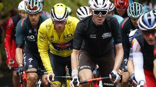 Le peloton du Tour de France dispute, samedi, la première étape alpestre de la 108e édition. (THOMAS SAMSON / AFP)