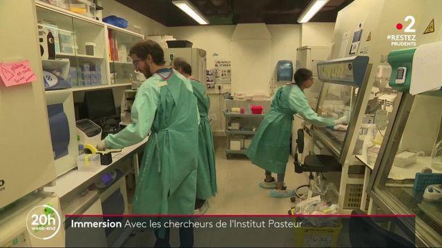 Coronavirus : dans le quotidien des chercheurs de l'Institut Pasteur