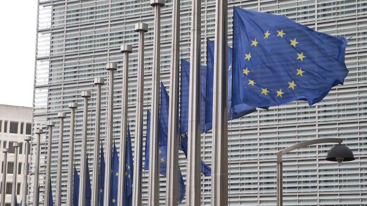Des drapeaux européens flottent au vent devant la façade du Parlement européen à Bruxelles (Belgique), le 23 mars 2016. (ELYXANDRO CEGARRA / NURPHOTO / AFP)