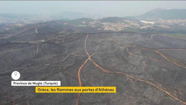 Incendies : les flammes s'approchent des portes d'Athènes, la Turquie et le sud de l'Italie également touchés